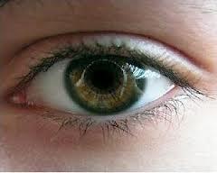 Отличное зрение3