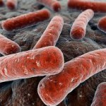 Болезнь туберкулез легких2
