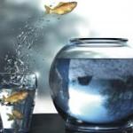 Как стать успешным инвестором2