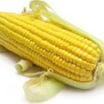 Кукуруза для похудения