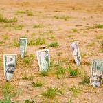 Инвестиции в земельные участки3