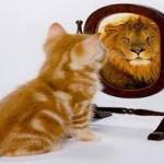 От чего зависит самооценка2