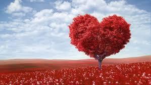 Ошибки влюбленности3