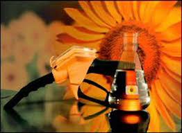 Использование биотоплива2