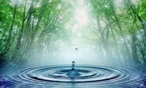 Вода мать всего живого